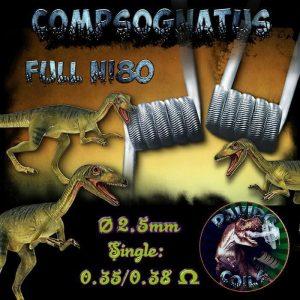 Davido Coils Compsognatus